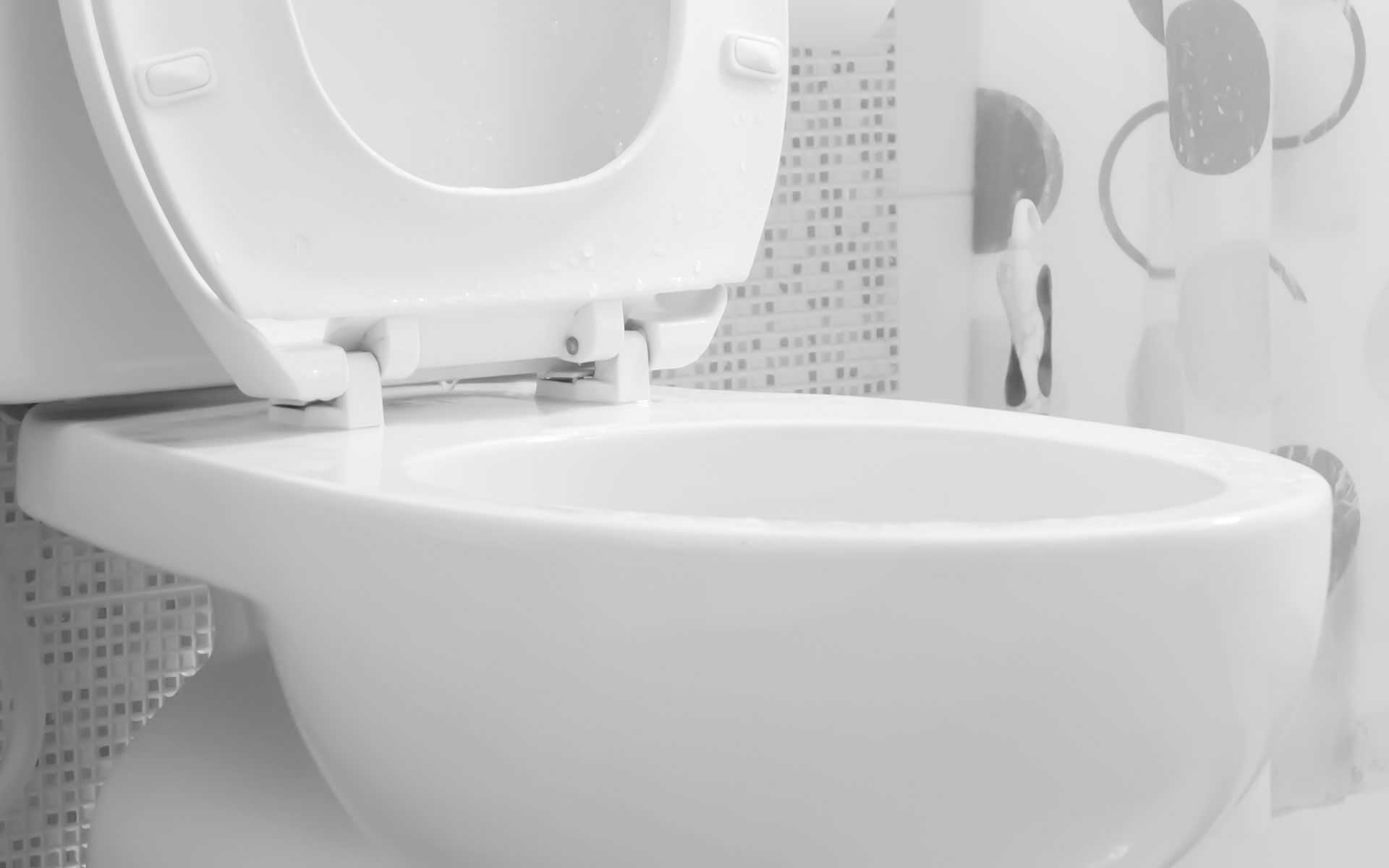 Oklahoma City Toilet Repair
